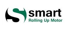 نمایندگی اصلی موتور توبلار اسمارت smart
